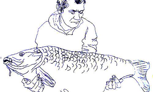 Рисунка 347
