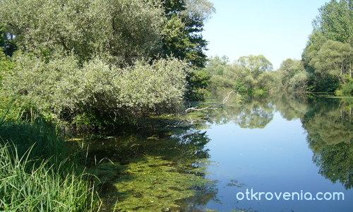 Там край реката!!!!