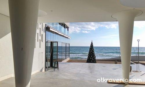 Безснежна Коледа на брега на морето - I