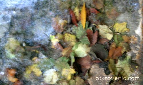 Есен във водата