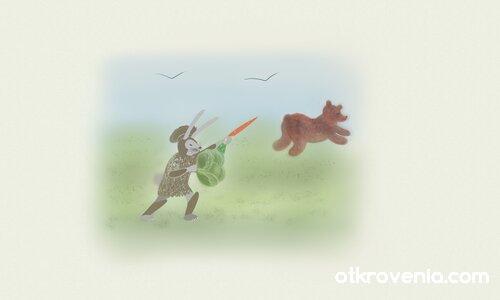 Заек - боец 3