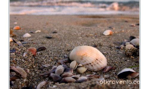 Морски полъх