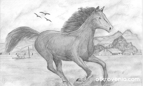 Дивия кон