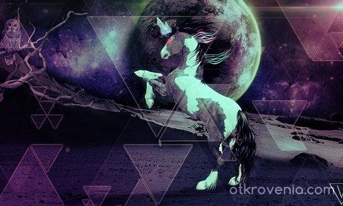 Не бъди кон, бъди еднорог!