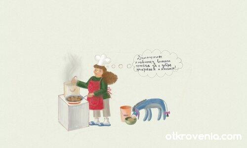 Йори - домашен любимец!;)
