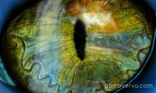 Окото на стихиите
