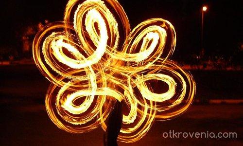 Огнено цвете 2