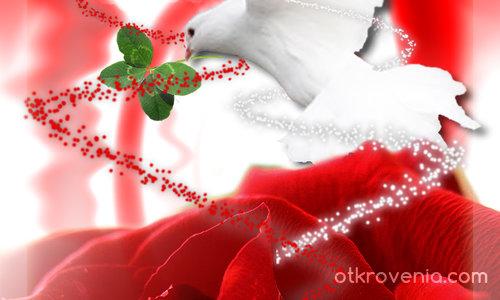 Честит Празник