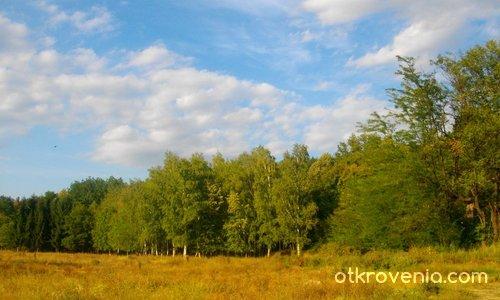 Есен в косите и слънце в очите