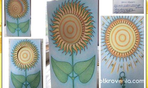 "Картичка ""Порасналото слънчогледче 2"""