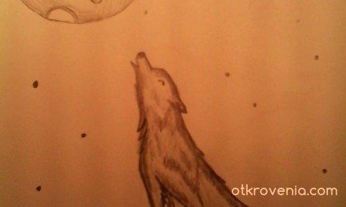 Виещ вълк!