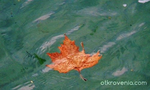 Есен в морето