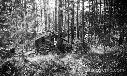 Приказна къща в гората