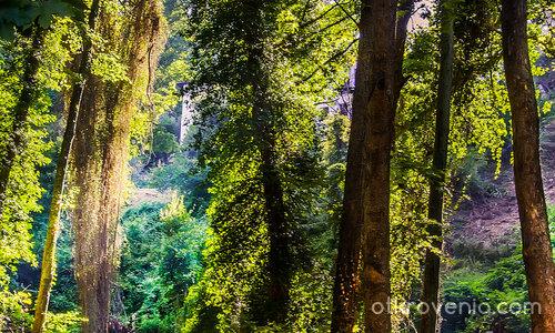 Из горите на Пилио