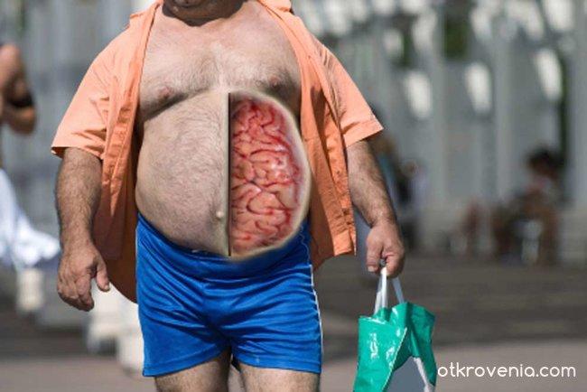 Урок по анатомия