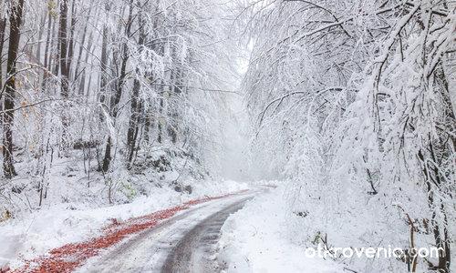 Първи сняг в Родопите