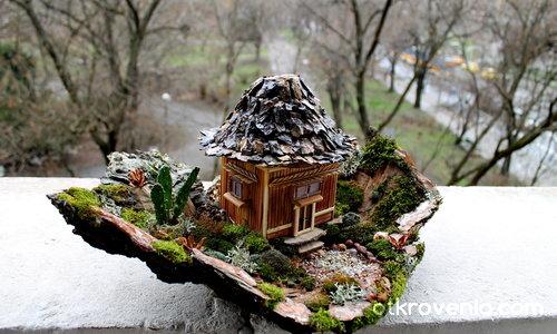 Къщата с кактуса