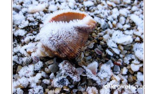 Кристалчета захар по морския бряг