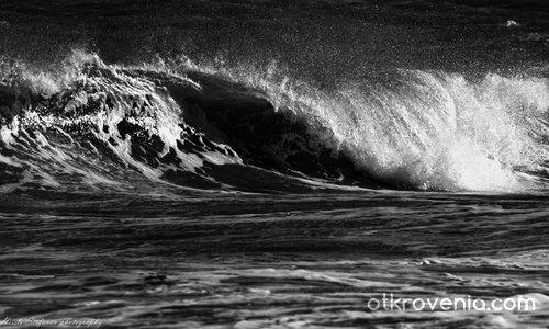 """""""И вълна съм на Живота - необятен океан"""""""