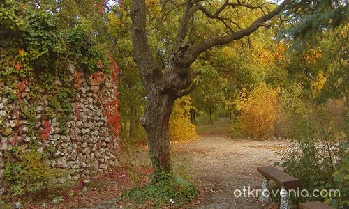 Eсен в парка