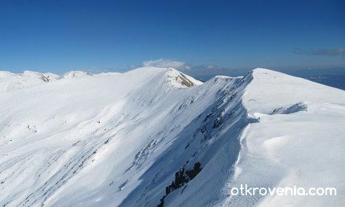 Поглед от Голям Мечи връх /2518 м/