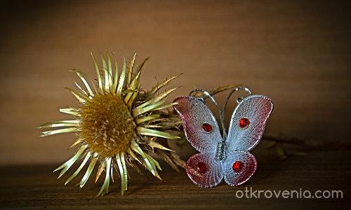 Любовни миниатюри