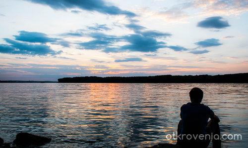 На Дунава