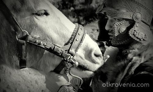 Душата на воина