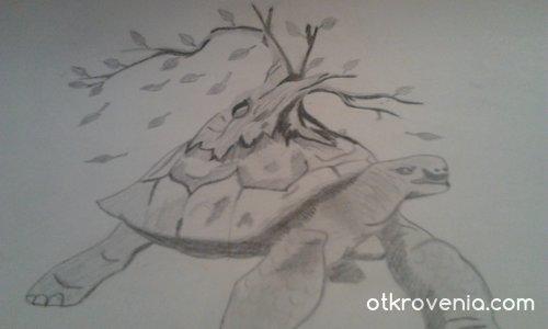 Kостенурка