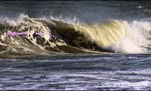 """""""Мечтая да се слея със вълните..."""""""