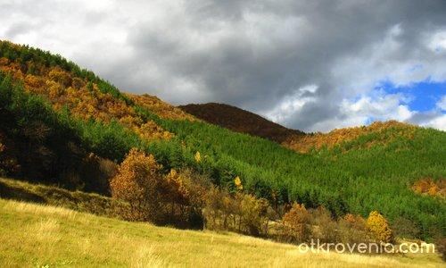Пътувайки през есента