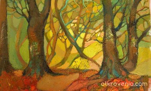 Светлина в гората