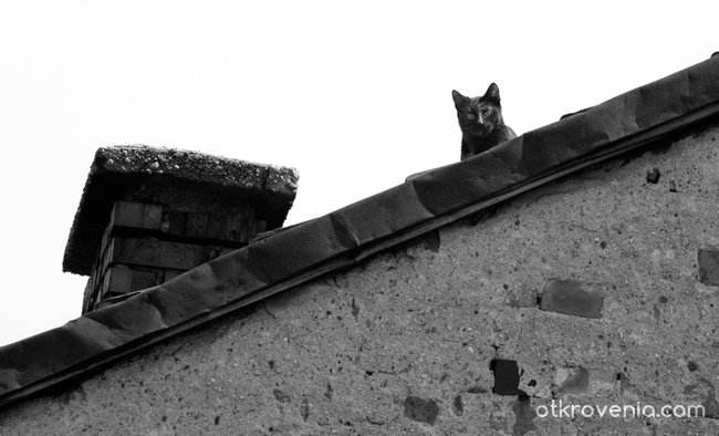 Диагонал, котка,комин/наблюдателят/