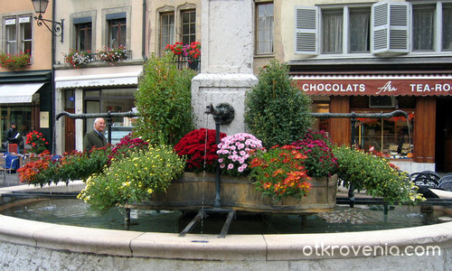 Фонтан с цветя (Женева)