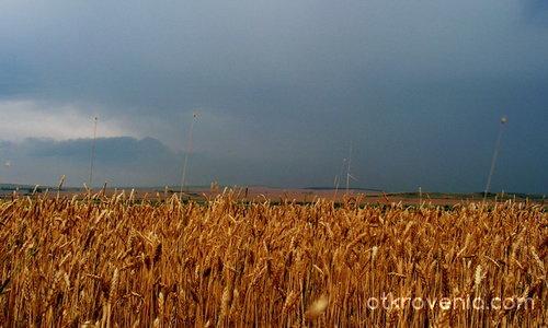 Преди бурята
