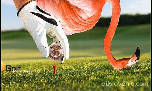 Да поиграем голф?