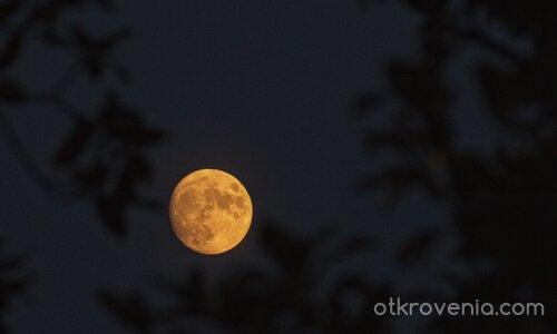 Пак Луната...