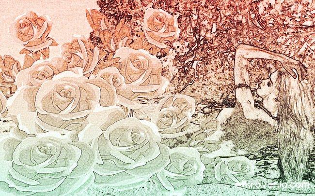 Розово събуждане