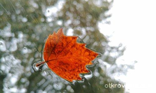 Стъклена есен