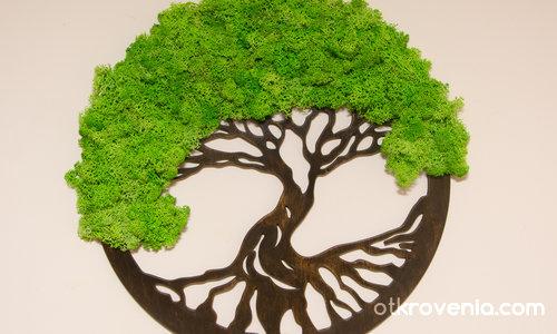 Дървото на живота/Tree of Life