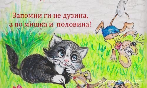 Колко мишки на котак?