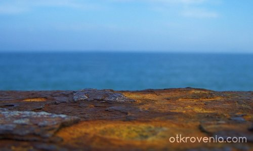 Морски трибагреник