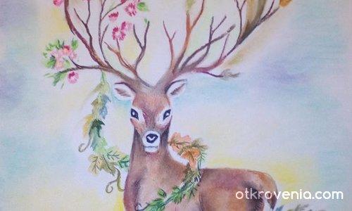 За земята, за животните, за дърветата....