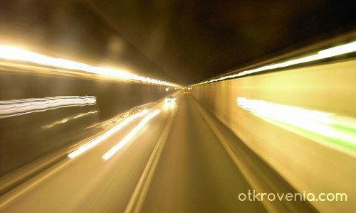 Скоростта на живота