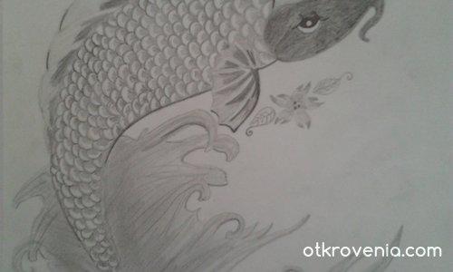 Рибата Кои ( японски шаран )