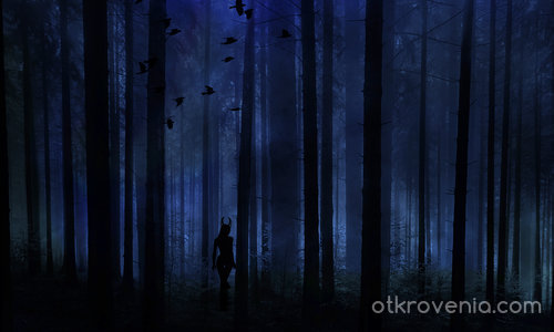 По тъмна доба дълбоко в горите
