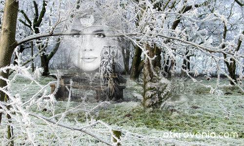 Духът на гората