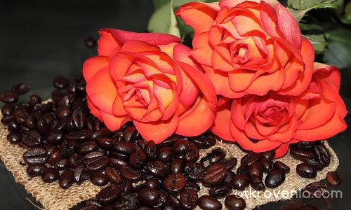 Кафе на зърна...
