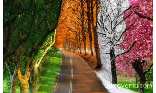Приказка за сезоните