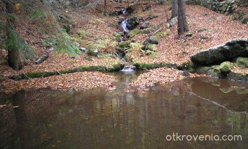рекичка и вирче